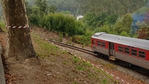 Homem encontrado morto junto à linha do Vouga em São João da Madeira