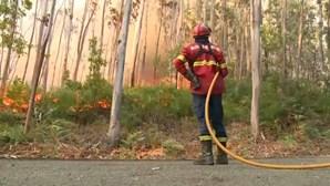 Homem identificado por suspeita de incêndio florestal no concelho de Vila Real