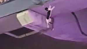 Gato cai de bancada em estádio de Miami
