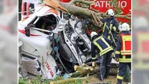 Camionista português morre em despiste seguido de violenta colisão com árvore na Alemanha