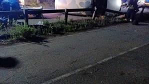 Homem fica ferido após despiste de carrinha em Ovar