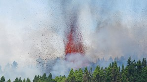 Cinzas do vulcão das Canárias podem chegar à Madeira nos próximos dias
