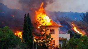 Governo da Madeira disponível para apoiar Canárias após erupção de vulcão