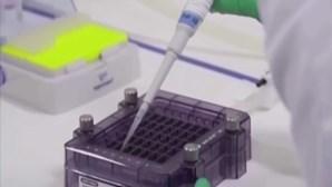 Pfizer diz que vacina contra a Covid-19 é efetiva em crianças entre os 5 e 11 anos