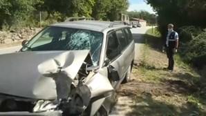 Homem de 85 anos morre em despiste de carro na EN16 em Viseu