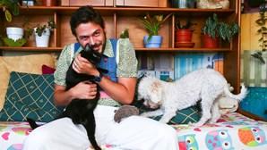 Uma família muito moderna e feliz cães e gatos