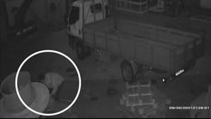 Zona industrial da Mota, em Ílhavo, tem sido alvo de muitos assaltos nas últimas semanas