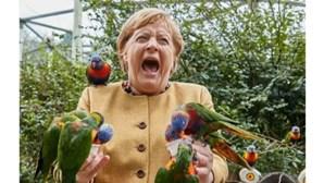 Merkel tira fotografia hilariante com papagaios no seu penúltimo dia enquanto chanceler alemã