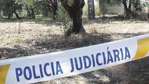 Mãe de vítima de violador português apanhado na Alemanha levou filha à mata onde foi abusada