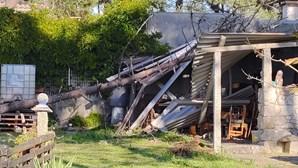 Queda de árvore em telhado fere com gravidade uma mulher de 67 anos