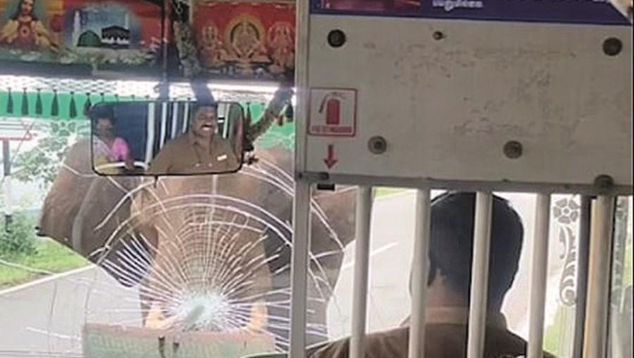 Elefante zangado ataca autocarro