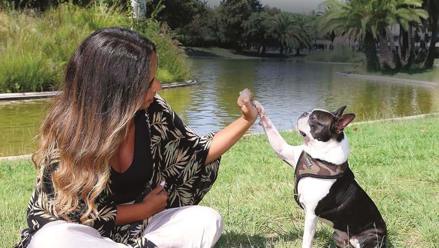 """""""É muito enérgico na rua, mas também muito preguiçoso em casa"""", conta Inês, orgulhosa do cão que tem muitos fãs na Internet"""