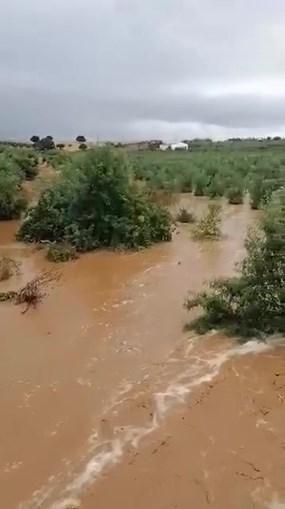 Chuva forte provocou inundações em Sobral da Adiça, no concelho de Moura