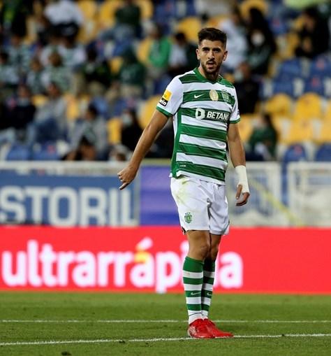Paulinho elogiado por Amorim