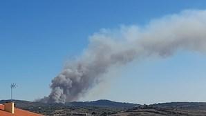 Bombeiros combatem chamas em Almargem do Bispo