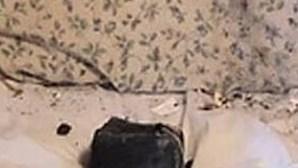 Mulher apanha susto ao acordar com meteorito na almofada