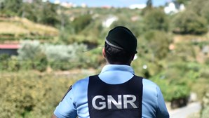 Novos radares engordam multas de trânsito