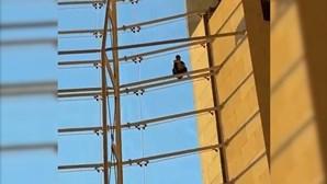 Homem escala estrutura no Aeroporto de Lisboa e cai de uma altura de cinco metros