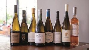 Exportações de vinho verde aumentam dez por cento em um ano