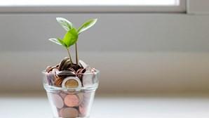 Saiba quais as estratégias mais simples para poupar dinheiro!