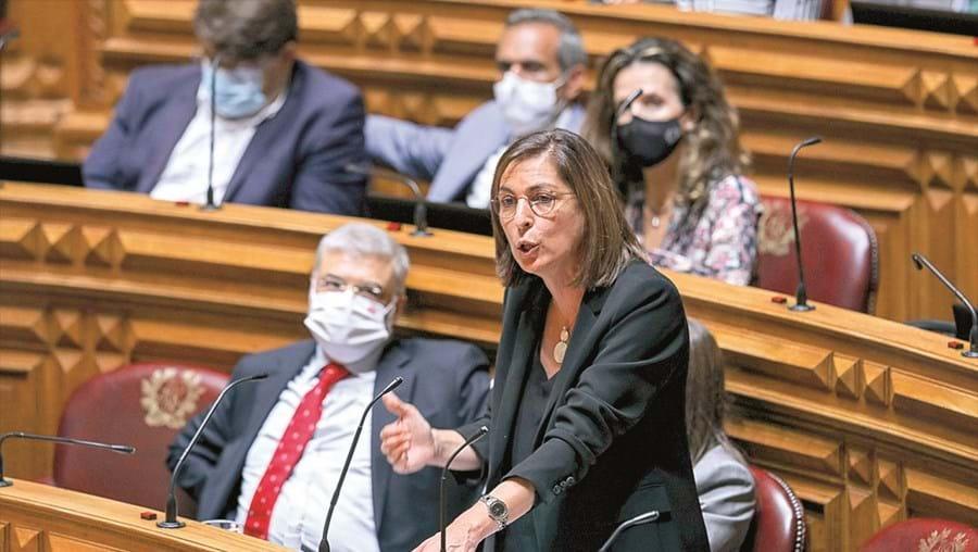 Projeto de lei polémico foi apresentado pelo grupo parlamentar do PS, liderado por Ana Catarina Mendes